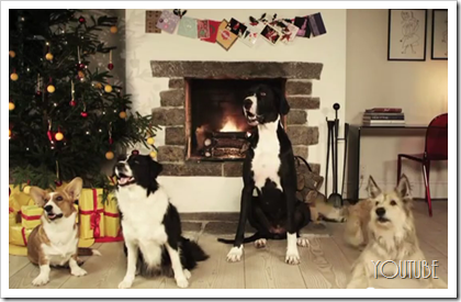 Dogs Barking Jingle Bells - Holiday Video