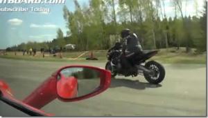 バイクで空ぶかししているようなクモの求愛行動