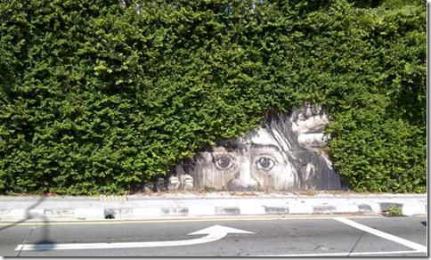 クマ「GoPro(゚д゚)ウマー」