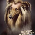 ペット向けの抜け毛防止のシャンプー広告がむごい
