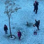 エジプトで歴史上初の雪を観測。はしゃぐカイロの子ども達