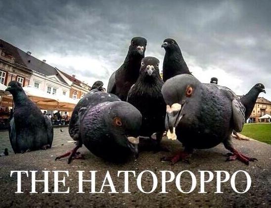 The HATOPOPPO