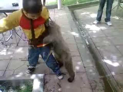 赤ちゃんがお腹の中で動き回る~~