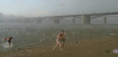 白鳥の子供たちが全員お母さんの背中に乗り込む瞬間