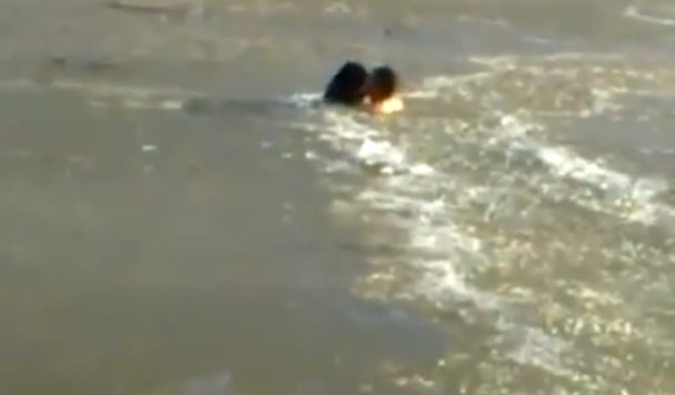 氷が張った極寒の川を泳ぎ、溺れた犬を助ける勇敢な男性!