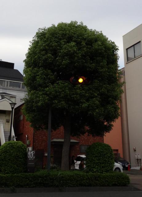 日立のとある信号。ほとんど妖怪である。