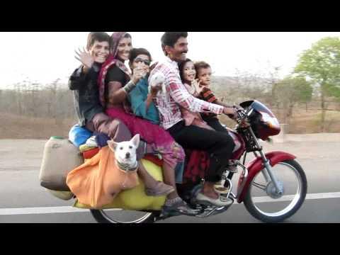 インド人+ワンコ大移動