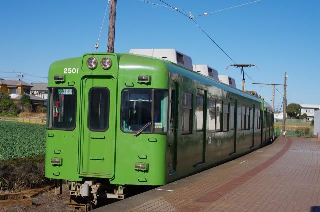 IMGP3911