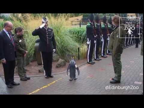 ノルウェーの近衛兵を表敬訪問する皇帝