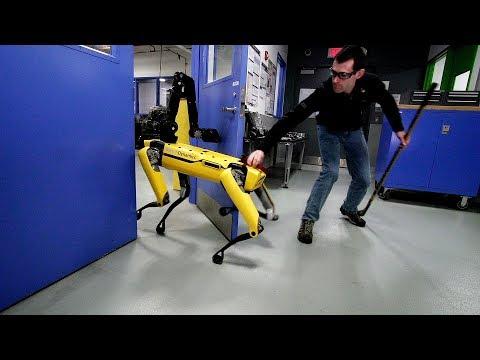 ロボットの邪魔をしてみるテスト