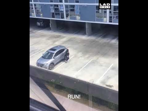駐車場で「サメが来たぞー」って言ってみた
