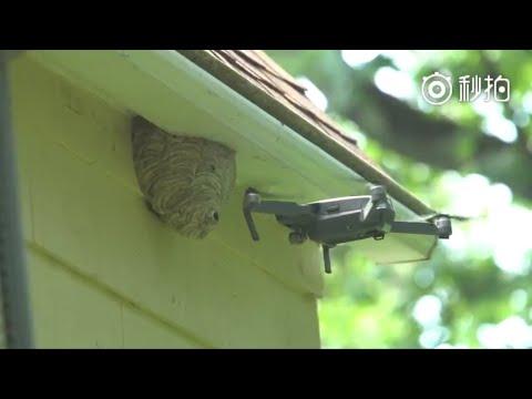 ドローンで蜂の巣駆除