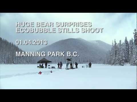 雪原で洗濯機のCM撮影をしていたらクマに遭遇・・・