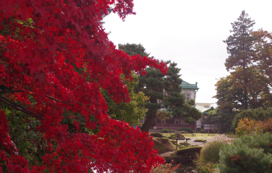 盛美館と紅葉
