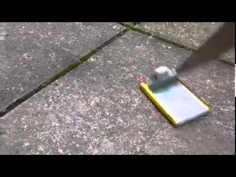 【動画で振り返る】伝わる恐怖と臨場感。個人がYouTubeに投稿した3.11震災動画