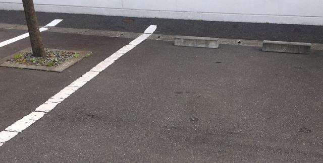 山田孝之「車吹っ飛ばされそう 」