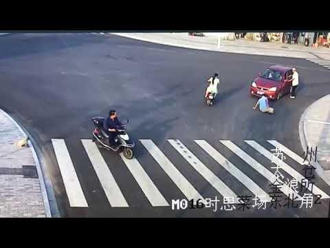 ワンコ凄い!横断歩道を渡らない人間を横目に颯爽と横断歩道を渡る