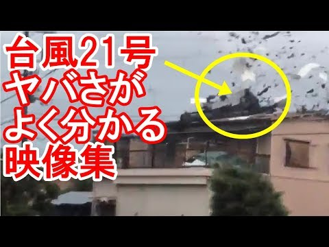 昨年の台風21号被害を振り返る
