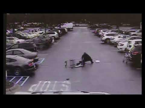 逃げる犯人を追いかける警察にナイスアシスト!