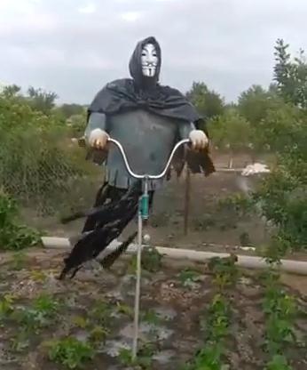 この鳥よけは怖い・・・