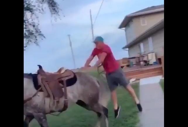 よーしパパ、かっこよく馬に乗っちゃうぞ~