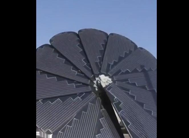 太陽光発電の進化形!ヒマワリ型ソーラーパネル登場